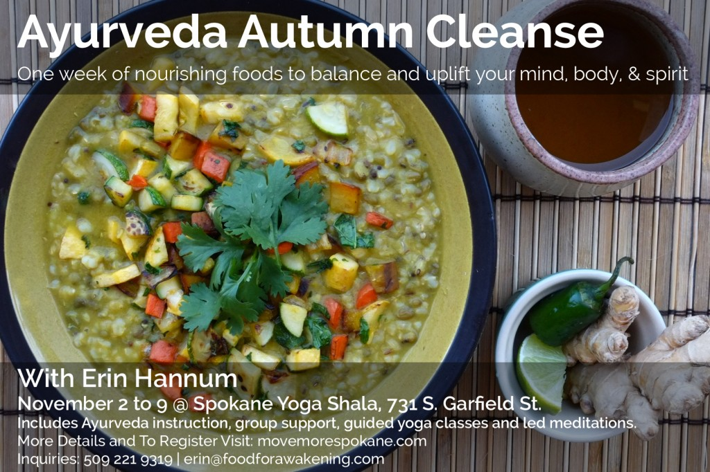 Ayurveda Cleanse Flyer_2014