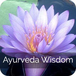Ayurveda Wisdom